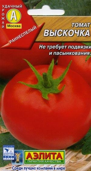 Выращивание томата выскочка